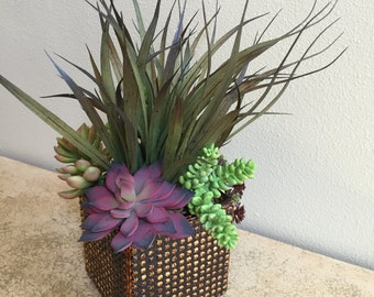 Artificial Succulents, Succulent  Arrangements, Grasses, Succulents