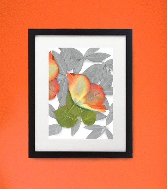 "Framed flower print of Twin Tulip. 11"" x 14"" wood frame floral print. Modern botanicals in unique setting."