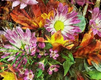 Fine Art Print, Nature Photography, Flower Fine Art Print, Garden Art. Large Wall Art, Large Art Print