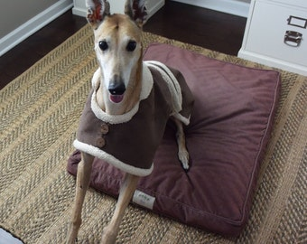 Preppy Hound Coat in  Brown Faux Suede with Sherpa Lining