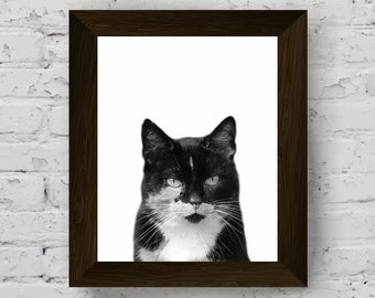 Animal print nursery, cat print, baby room prints, animal art, nursery decor, nursery wall art, baby room wall art, cat wall art, cat photo