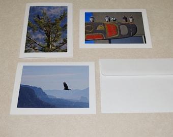 Bird Photo Cards (Blank Greeting Cards)