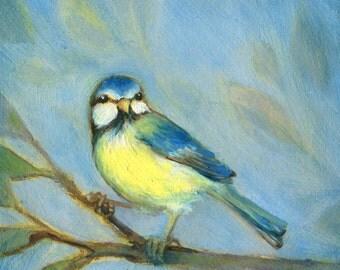 Blue Tit Print, Bird Art