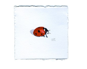 Small Red Ladybug Watercolor