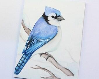 Original ACEO Card, Blue Jay Bird Art, Winter Bird Drawing, Watercolor Painting, Hand Drawn ATC, Cyanocitta cristata, Nature Wildlife