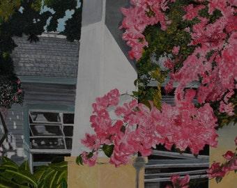 Key West Bougainvillea