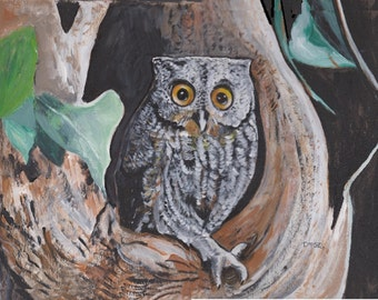 Young Owl In Tree
