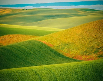 Palouse Photography, Eastern Washington Photos, Rural Landscape Photography, Agriculture, Curvy Hills, Green Nature, Palouse Fine Art