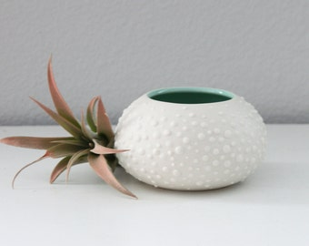 Small Round Porcelain Vase Mint Green - Sweet Pea in Mint Green - Ceramic Urchin - Air Plant Pottery Container - Ceramic Air Plant Vase