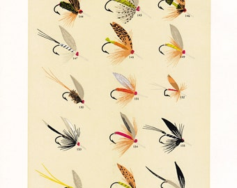fly fishing print from an 1892 book, printable digital download no. 944