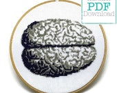 Anatomical Brain Counted Cross Stitch Pattern PDF Download