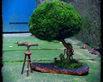 Fairy Moss Tree, moss tree, topiary, miniature tree, bonsai, indoor garden, natural decor, wedding decor