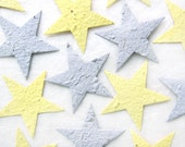 20 BIG Silver and Gold Seed Paper Stars Wedding Favors Plantable Paper Stars - Starry Night Wedding - Astronomy Birthday Party Favors