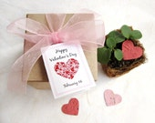 2 Seed Paper Valentine's Day Favors - Gift Box Set with Plantable Pots - Kids Classroom Valentines Day Party Favors - Teacher Thank You