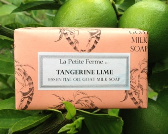 Tangerine Lime goat milk soap absolutely delicious