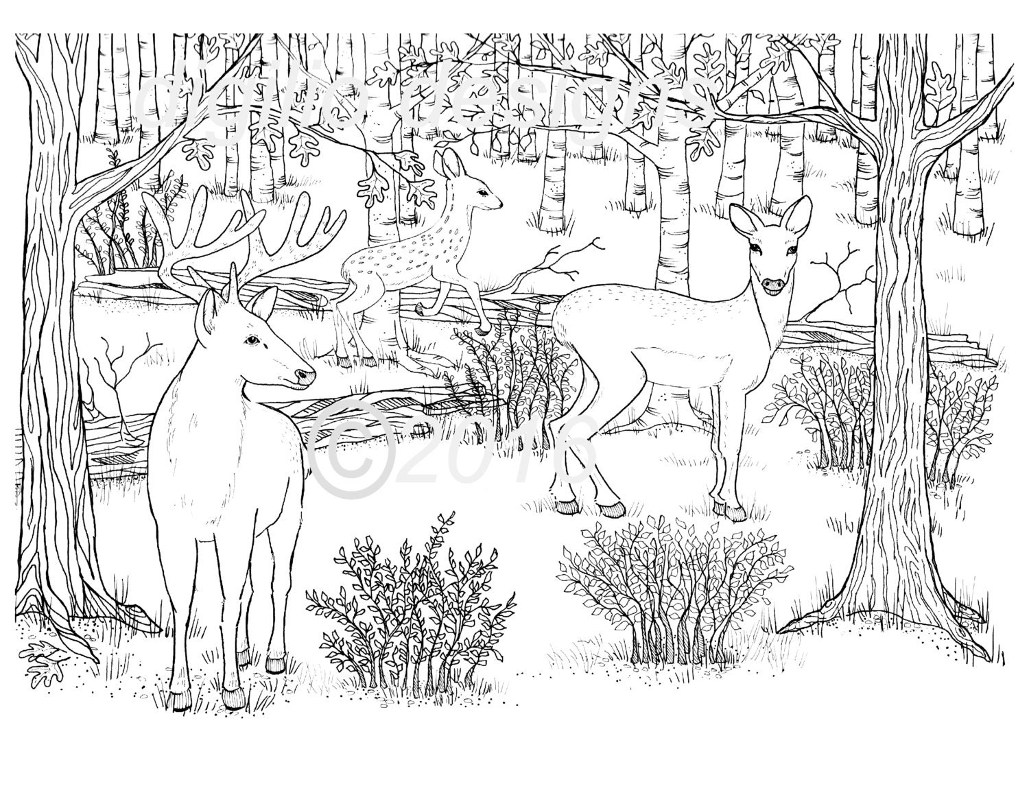 Adult coloring pages forest ~ Adult Coloring Page-Deer-Woodland-Forest-Deer in the Dell-Wall