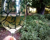 1 replacement summer wine glass