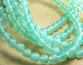 Green Turquoise Opal Czech Glass Beads Smooth Round Druk Milky 4mm (50)