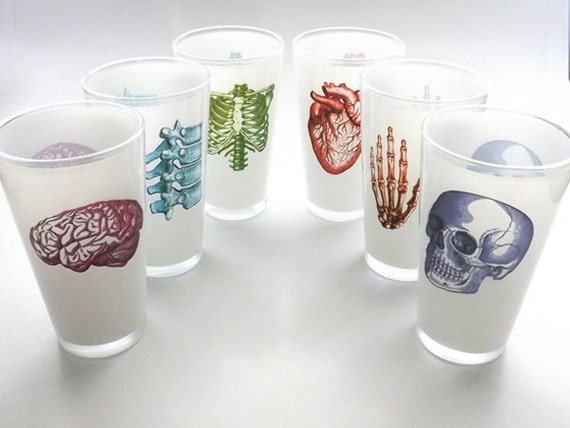 Anatomy beer PINT glasses gifts for him her doctor medical student male nurse physician anatomical heart skull brain graduation party favors