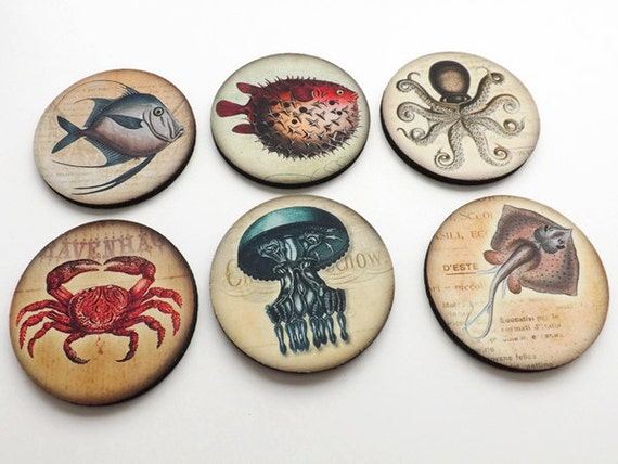 Ocean Creatures Coasters mug rugs hostess gift coastal beach nature crab puffer blue fish octopus jellyfish party favor home decor nautical