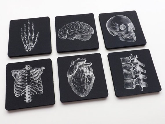 Human Anatomy Gift Coasters med student graduation masculine white black decor anatomical heart science goth kitchen nurse practitioner nerd
