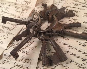 RIng of Bakers Dozen Vintage Keys and Skeleton Keys for Steam Punk/Repurposing/Destash Jewelry Making