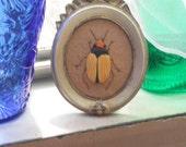 Embroidered Beetle Bug - Stumpwork Embroidery