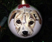 Custom Ceramic Hand Painted Pet Ornament from your photos