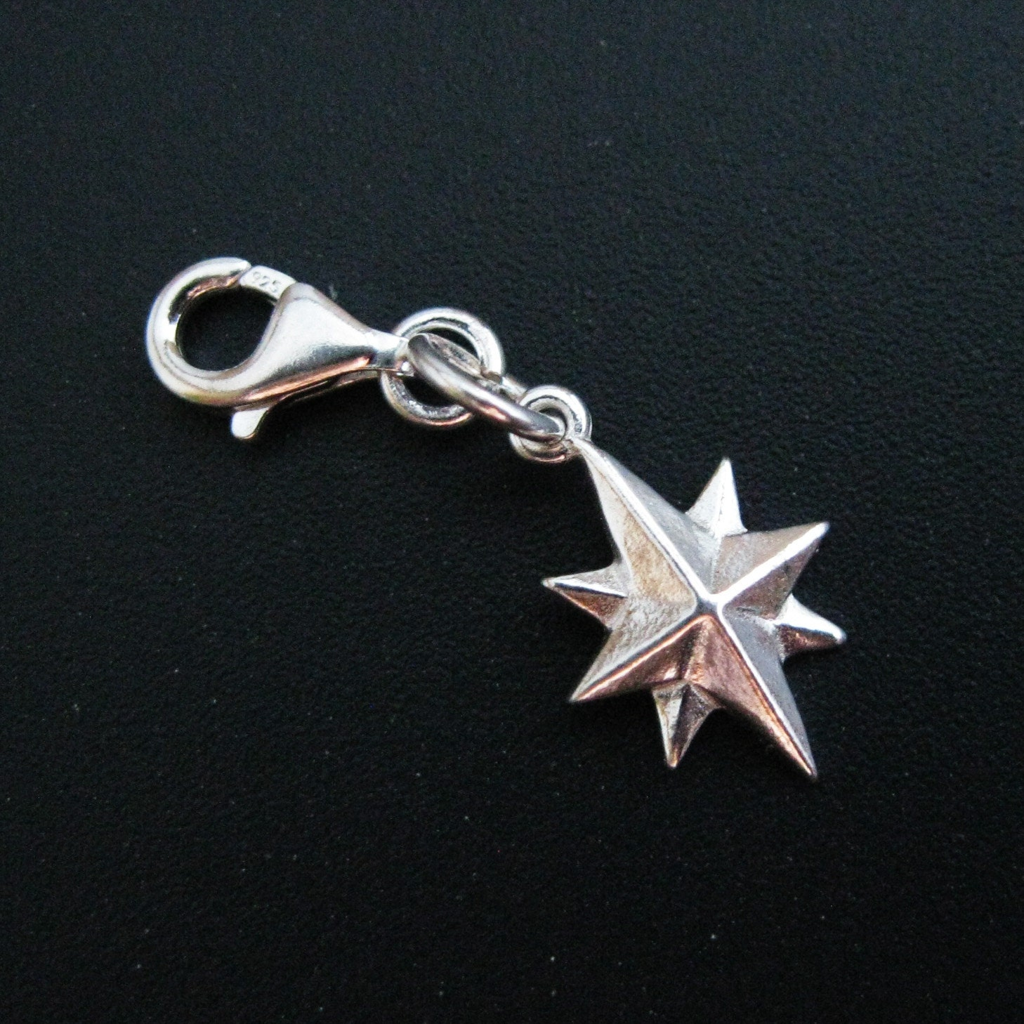 Clip on Charms for Bracelet 925 Silver Charm with Clasp Silver