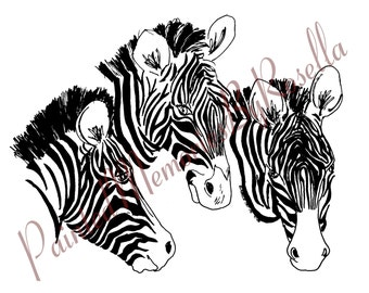DIGITAL DOWNLOAD 10X8 ZEBRAS print
