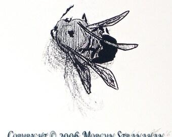 Bee - Silk screen (hand printed)
