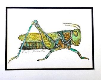 Grasshopper Original Drawing, Framed Ink and Watercolor Drawing, Framed Grasshopper Art, Original Watercolor Ink Drawing, Framed Art