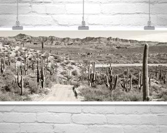 Desert Photo, Black and White, Saguaro Cactus Art, Tucson, Desert Art, Landscape Art, Country Roads, Road Trip, Back Roads, Panoramic Art
