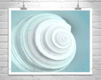 Seashell Wall Art, Shell Print, Bathroom Art, Blue Art, Fine Art Print, Shell Art, Teal Art, Bathroom Decor, Wall Decor, 8x10, 11x14, 16x20