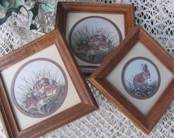 Wow...Lowered Price Home Interior Rabbit Pictures Sweet Set of 3 Bunny Rabbit Prints