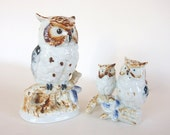 Vintage Ceramic Owl Family