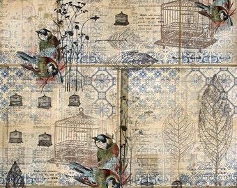 Rustic Shower Curtain, Bird Home Decor, Farmhouse Decor, Cottage Chic Shower Curtain, Antique-Looking, Weathered-Looking Shower Curtain