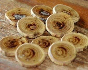 Elm wood buttons/slices - 10 pc. set