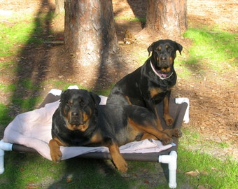 Dog Beds, Small Dog Cots, Medium Dog Beds, Choose Top Gun Marine Boat Canvas Cot OR Phifertex Pet Screen Mesh 23x34 Dogs Up To 80 Pounds.