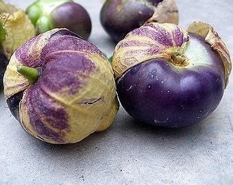 Organic Purple Tomatillo Heirloom Vegetable Seeds