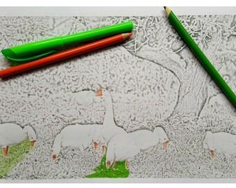 Flock Of Geese Coloring Page, Pattern DIY Print at home Digital Download, Adult Coloring geese, Patterns