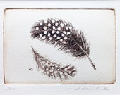 original etching of two spotted feathers