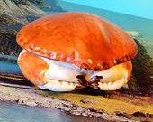 Ceramic Crab - Toni Raymond Pottery - 1960s - Vintage Pottery - Novelty Pottery - English Ceramics