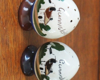 Vintage Salt and Pepper Shakers Torquay Mottoware Watcombe Penzance Country Cottage Brown Blue 1950s