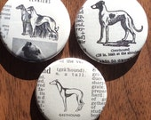 Greyhound Vintage Dictionary Magnet Set of 3