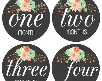 FREE GIFT, Baby Girl Monthly Stickers, Baby Month Stickers Girl, Milestone Stickers, Photo Stickers Floral Coral Mint Peach Light Teal Aqua