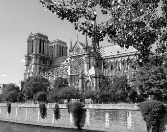 Notre-Dame de Paris -  Fine Art Original Photograph Wall Art