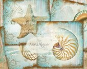 30% OFF SALE - COASTERS Shabby Sea Shells - Digital Collage Coasters - Digital Maritime Tags - Nautical Images - Scrapbooking Backgrounds -
