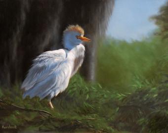 Bird Original Oil Painting Cattle Egret 12x16 Linda Merchant Fine Art Hand Painted Oil Painting Wildlife Bird ooak