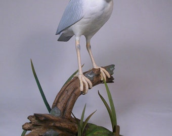 "11"" Night Heron Bird Wood Carving Hand Carved Wooden Bird"